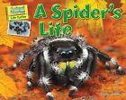 A Spider's Life by Ellen Lawrence (Hardback, 2012)