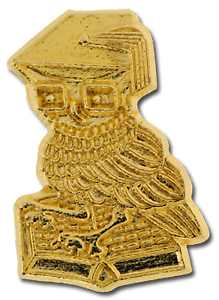 Wise Owl Gold Award Pin Badge For Schools