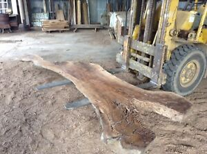 Walnut-Slab-2-4-Metres-Freight-Available