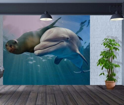 Beautiful close up of seal and dolphin swimming wallpaper wall mural 52252564