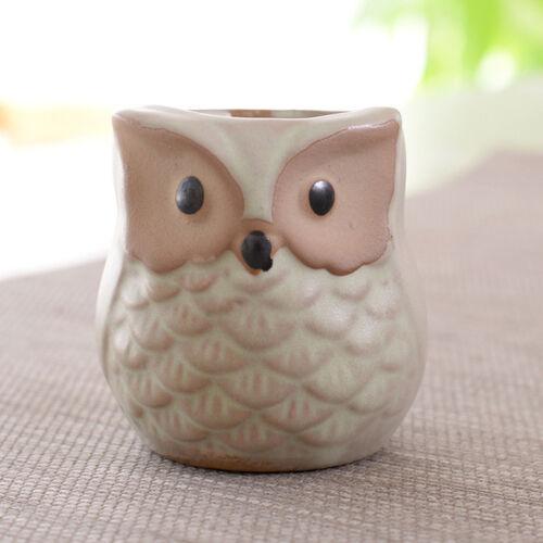 6pcs//set Mini Ceramic Owl Succulent Plants Bonsai Pots Flower Home Desk Decors