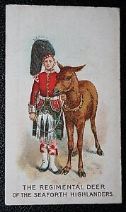 SEAFORTH HIGHLANDERS    Regimental Deer     Original 1911 Vintage Colour Card