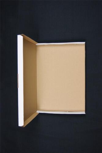 300 cajas cartón A4 C4 Postal De Correo Caja de Envío Carta PIP Grande OP2