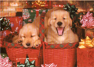 image is loading golden retriever puppies in baskets christmas cards box