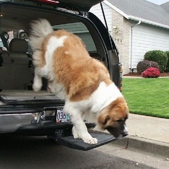 Otto Step for traveling traveling traveling with your dog in a Truck or SUV  and NO LIFTING 66c516