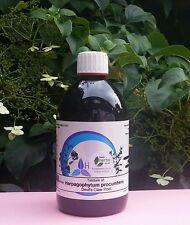 Devil's Claw (Harpagophytum Procumbens) 1:3 Ratio - 500ml Herbal Tincture