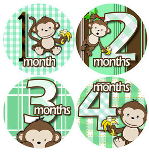 1-12 Monthly Baby Stickers - Bodysuit Romper Stickers - GREEN BANANA MONKEYS