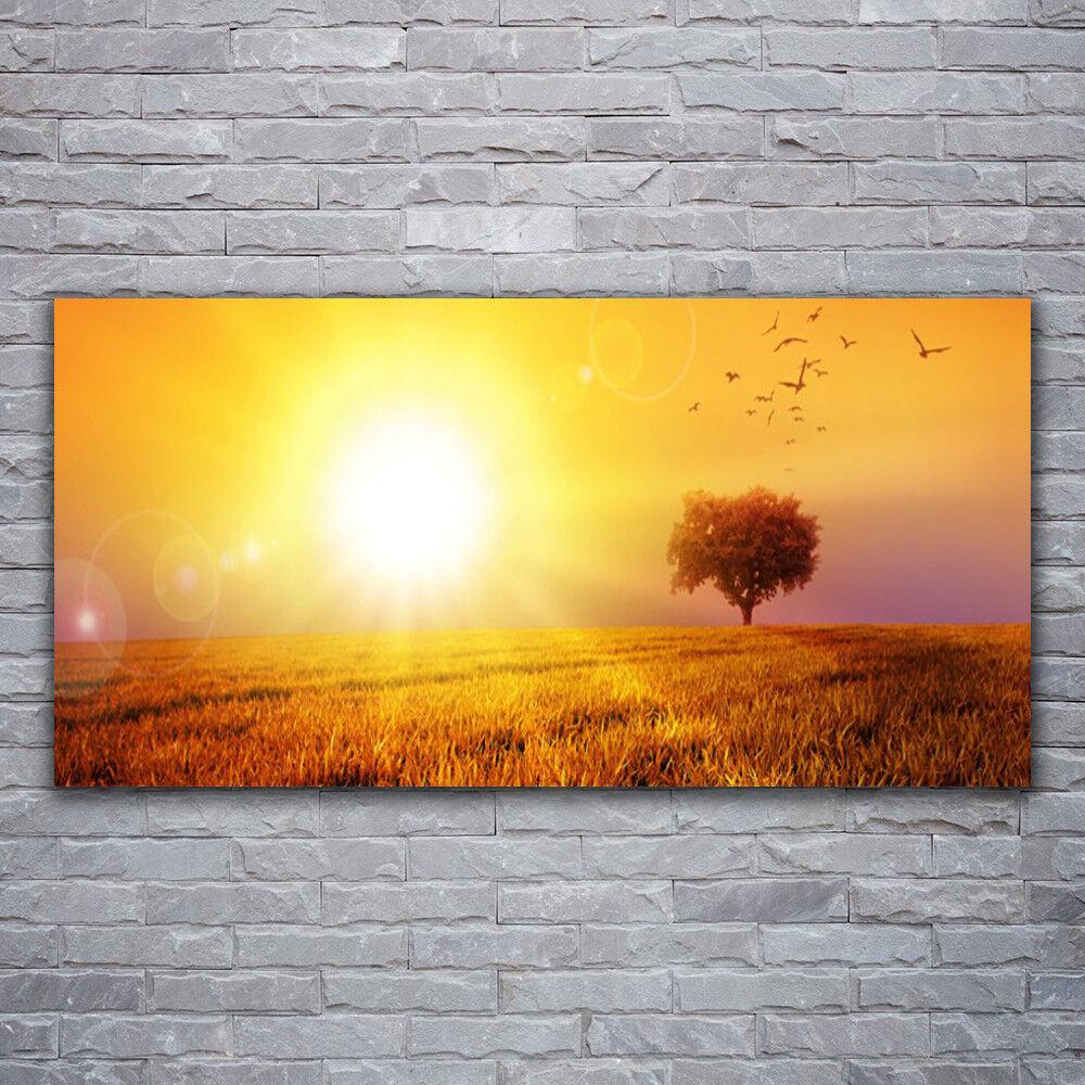 Photo sur toile Tableau Image Impression 120x60 Paysage Prairie