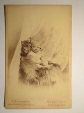 Köln - 1894 - Baby auf Fell im Sessel / KAB