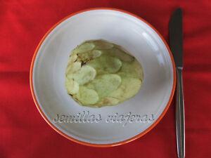 Annona Cherimola, Chirimoya Fruit Edible, 15 Semillas, Seeds, Graines, Samen Pour Convenir à La Commodité Des Gens