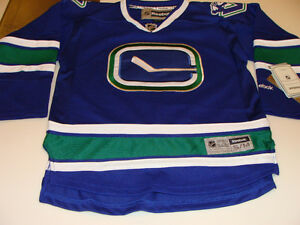 Image is loading Vancouver-Canucks-3rd-Alternate-Hockey-Jersey-Child-Large- 04fd4a800