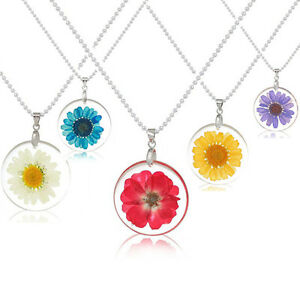 Charm-Transparent-Dried-Flower-Daisy-Round-Resin-Pendant-Necklace-Chain-Jewelry