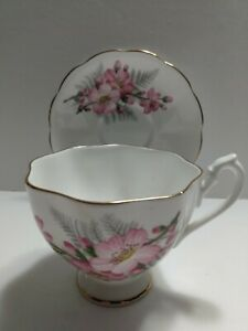 Queen-Anne-England-China-Tea-Cup-and-Saucer-Pink-Flowers-and-Ferns