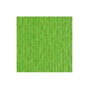 Cartoncino Fabriano Cartacrea 10 ff 35x 50 Verde Pis.
