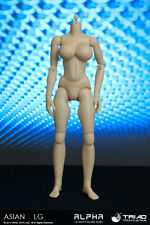 Triad Toys Headless Asian LGB Alpha Sixth 1/6th Scale Female Body