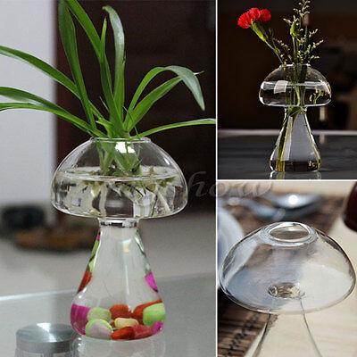 Mushroom Glass Plant Flower Vase Hydroponic Container Tank Garden Wedding Decor