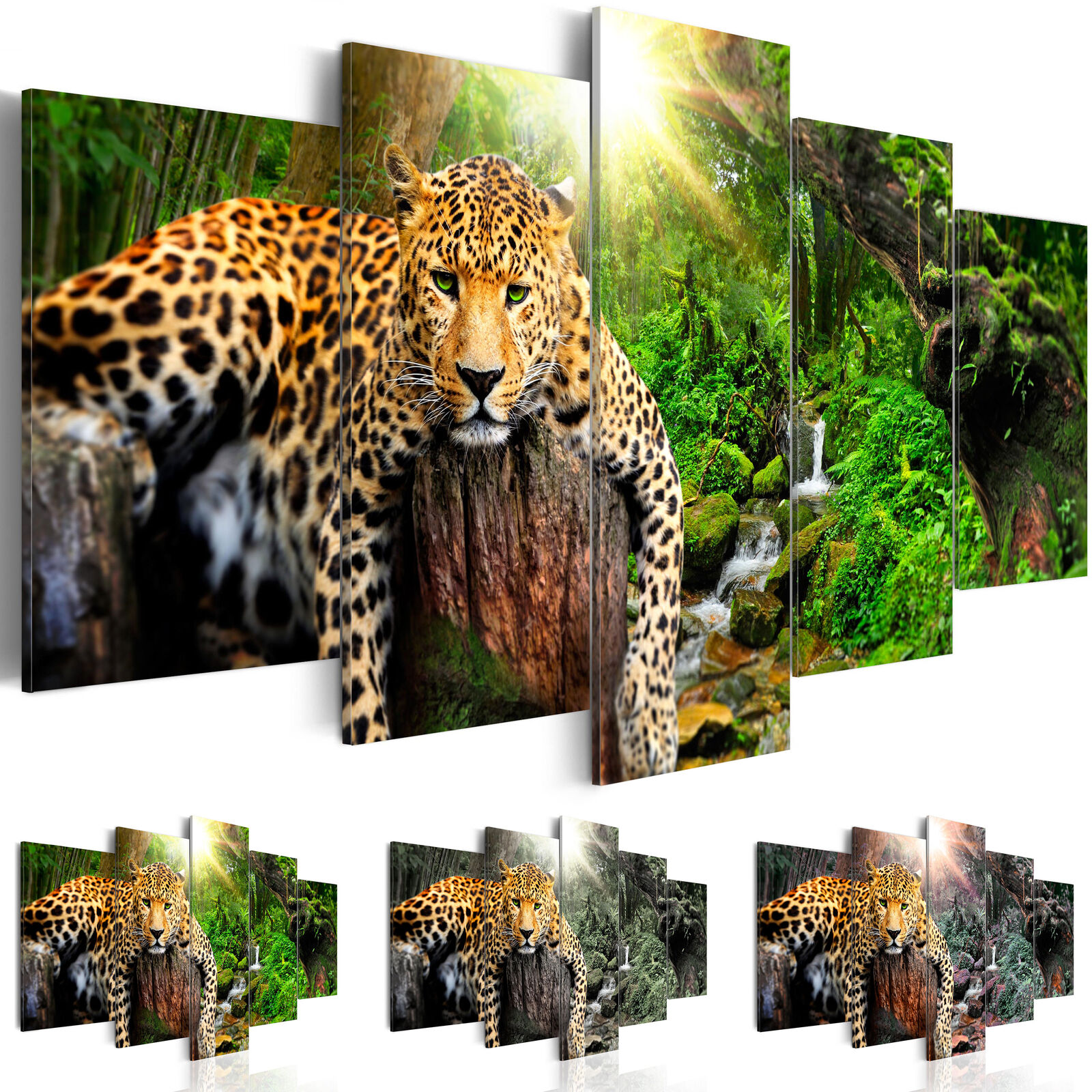 Acrylglasbild Leopard moderne Wandbilder xxl Tiere natur 5 tlg Bild g-C-0031-k-n