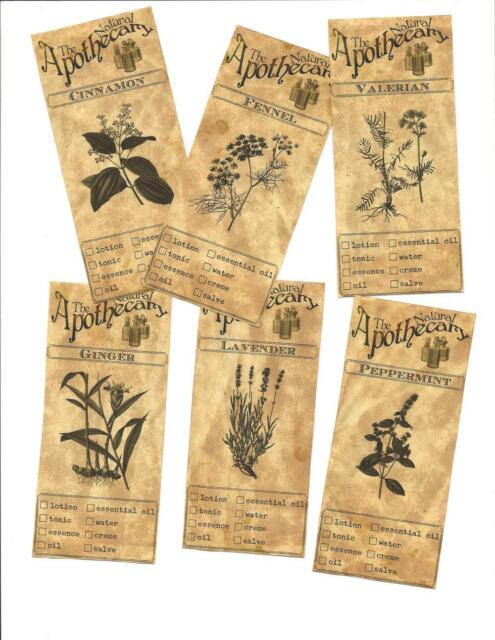 LOT OF~12 Vintage look LABELS~Grungy labels ~Botanical Labels~ set# 3