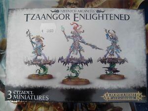 Warhammer-Age-of-Sigmar-Tzeentch-Arcanites-Tzaangor-Enlightened-83-74