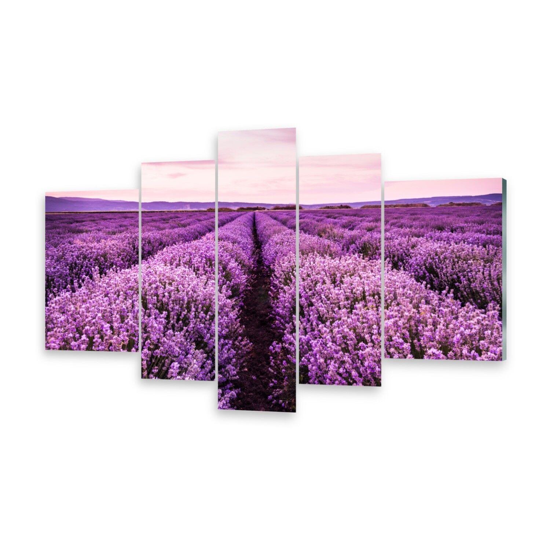 Mehrteilige Bilder Glasbilder Wandbild Blühender Lavendel