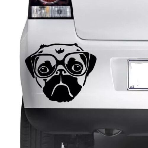 PUG DOG Funny  Cute Car Window Bumper Wall JDM  VAG Novelty Vinyl Decal Sticker