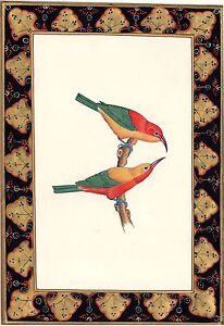 Indian-Nature-Bird-Painting-Handmade-Miniature-Ornithology-Ethnic-Wall-Decor-Art