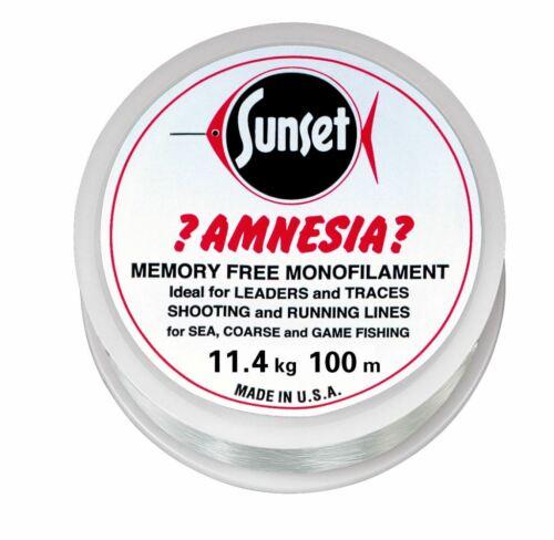 Leader-Vorfach Amnesia Clear 11,4kg 100m 0,10 EUR//m
