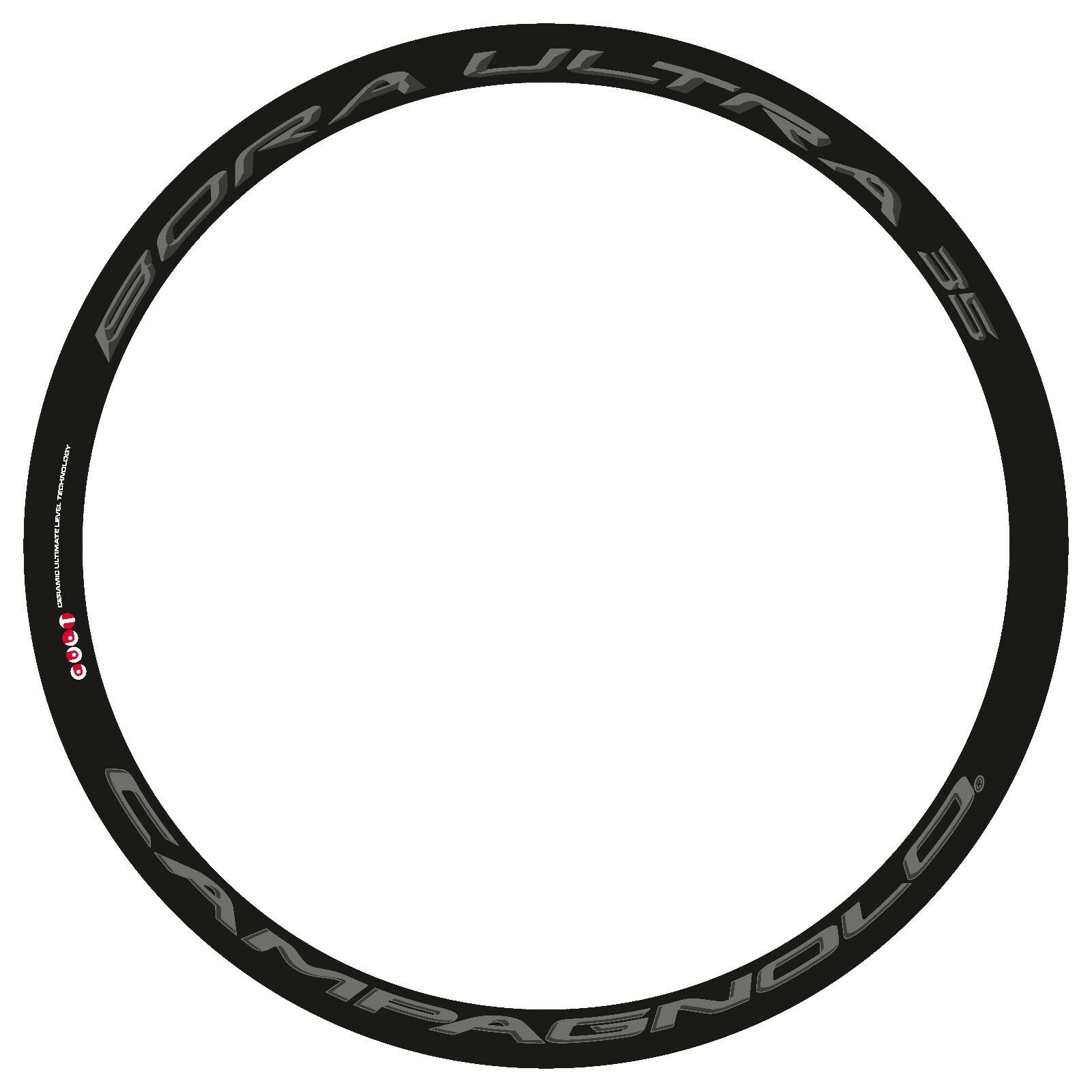CAMPAGNOLO BORA  ULTRA 35 3D DARK LABEL REPLACEMENT RIM DECAL SET FOR 2 RIMS  low-key luxury connotation