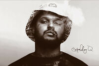 Schoolboy Q Music Poster 24x36