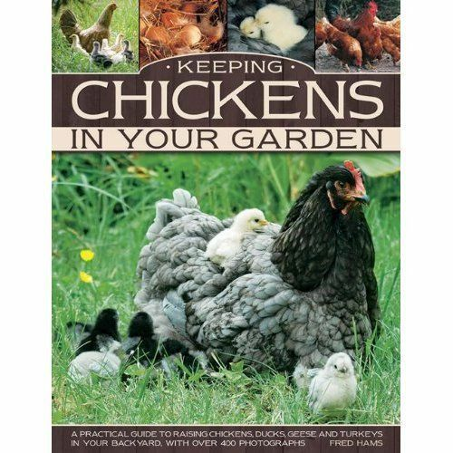 1 of 1 - Keeping Chickens In Your Garden: A Practical Guide To Raising-ExLibrary