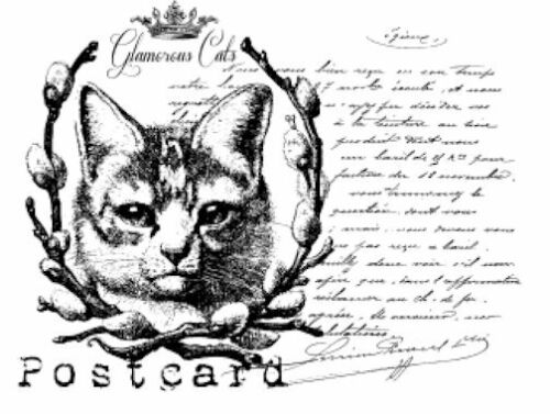 Vintage Image French Cat Post Card Furniture Transfers Waterslide Decals MIS636