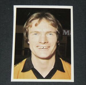 #300 EVES WOLVERHAMPTON WOLVES DAILY STAR FOOTBALL ENGLAND 1980-1981 PANINI j4T4kJea-09095824-327437005