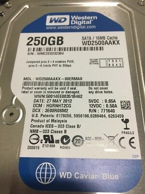"New WD Blue WD2500AAKX 250GB 7200RPM 16MBCache SATA 6Gb//s 3.5/"" Hard Drive"