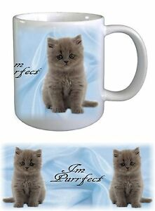 Persian Cat Ceramic Mug by paws2print