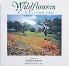 Wildflowers of California by Susan Lamb (Paperback, 1994)