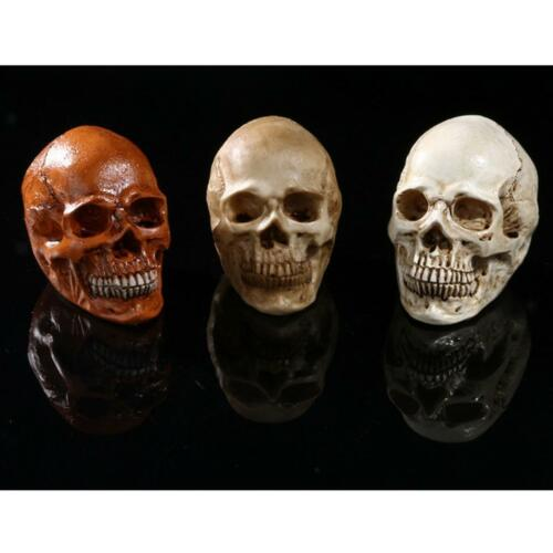 Skull Gothic Ornament Figurine Human Skeleton Head Halloween Decor Yellow