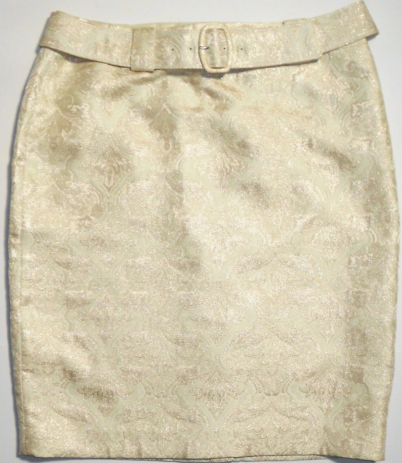 Ann Taylor Champagne Belted Holiday Evening Skirt Sz 12 NWT