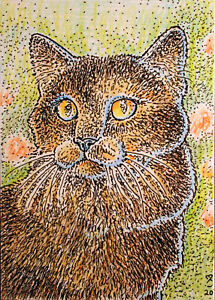 ACEO-Fantasy-Original-Yertle-cat