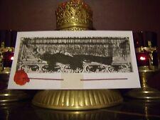 St. Gemma Galgani Ossuary Holy Relic Card Reliquary with Prayer