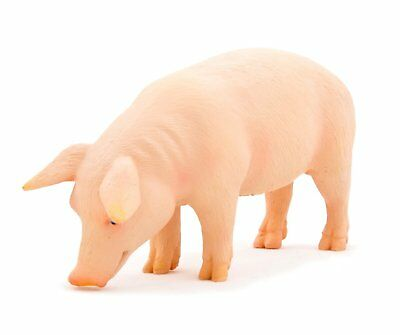 Enthusiastic Pig Boar Replica 387080 ~ Usa W Mojo Products Bright In Colour Other Educational Toys