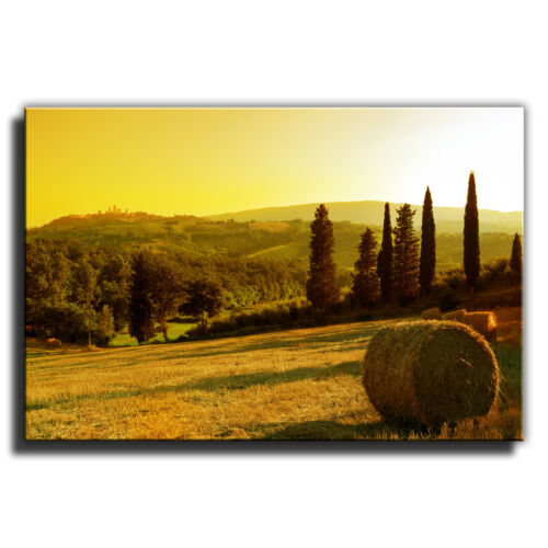 Italy Tuscany Sunset Landscape Canvas Art Print box framed Picture 9
