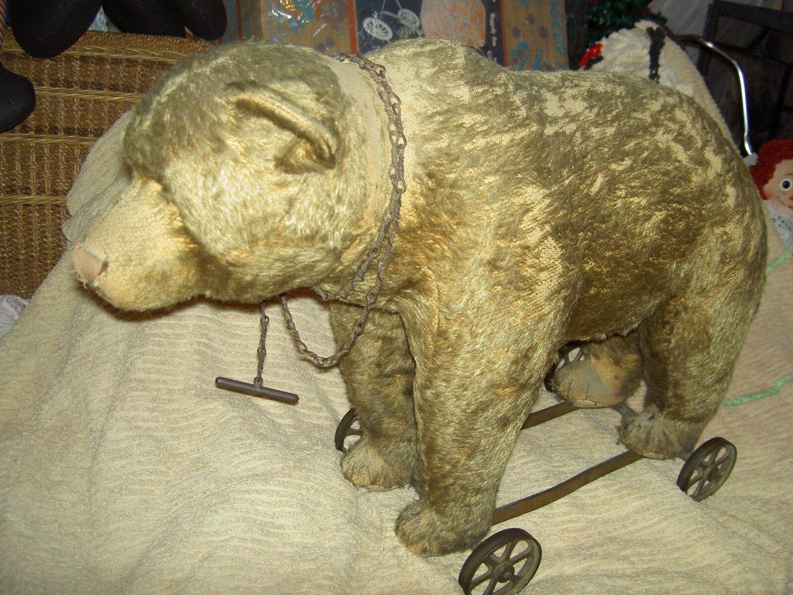 Great early antique Steiff oroen BEAR on wheels, working growler & pullstring