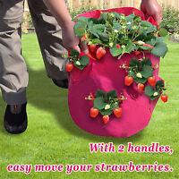 3pc Strawberry Planter Grow Bag Herb Planter Patio Garden Yard Seedling Pot Tub