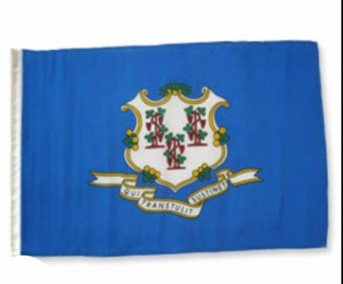"""12x18 12/""""x18/"""" State of Connecticut Sleeve Flag Boat Car Garden"""