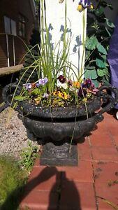 Pair-of-cast-iron-urns-cast-iron-planters