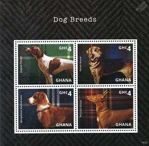 Dog Stamp Sheet (english Pointer/polish Hound/pharaon/westphalien Dachsbracke)-westphalian Dachsbracke)fr-fr Afficher Le Titre D'origine Belle Et Charmante