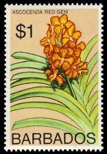 "BARBADOS 408b (SG521) - Ascocenda ""Red Gem"" Orchid 1975 Printing (pf90811)"