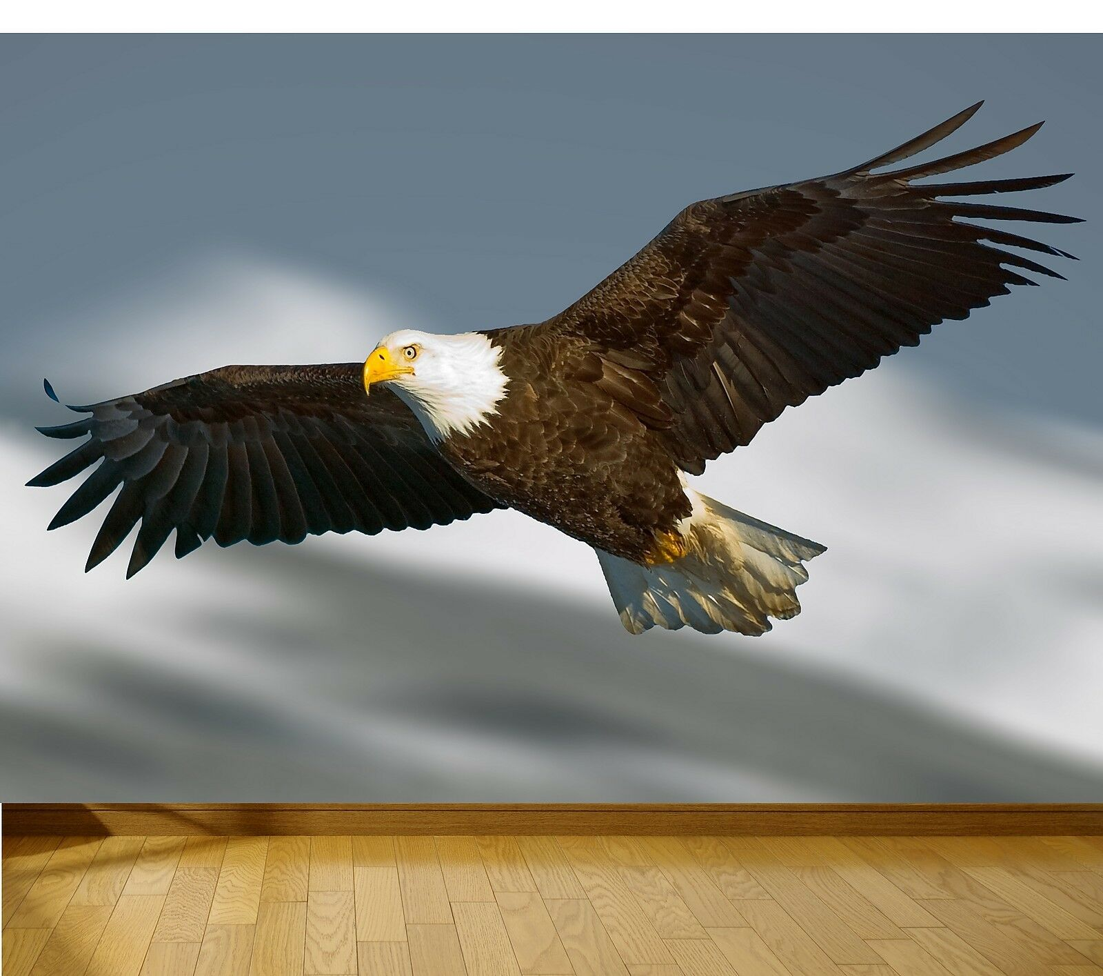 Eagle Nature wallpaper mural style 1  feature wall design wm001