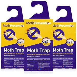 POWERFUL-MOTH-TRAPS-FOR-CLOTHES-MOTHS-Odor-free-amp-Natural-Best-Catch-Rate-on