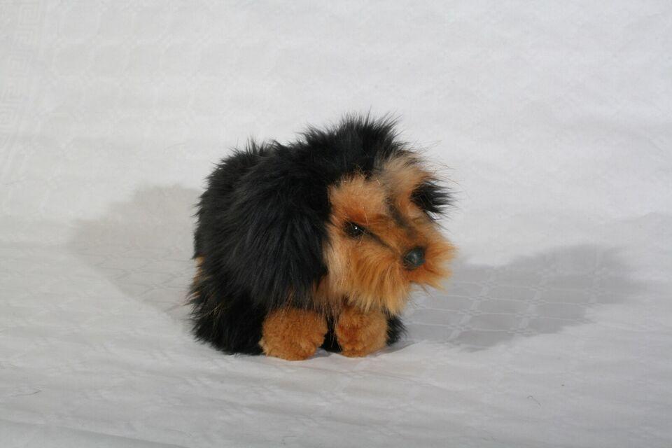 Plys-hund, Hansatoy
